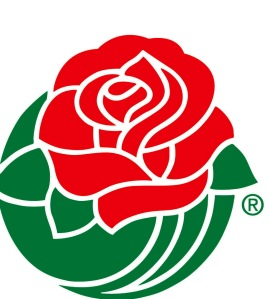 Wisconsin Badgers Rose Bowl 2012